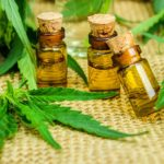 Cannabis reduces seizures in patients with severe epilepsy -Study
